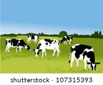 cows   Shutterstock .eps vector #107315393