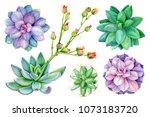 set of painted green plants ... | Shutterstock . vector #1073183720