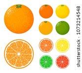 vector citrus fruits icon... | Shutterstock .eps vector #1073214548