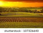 sunset over barossa valley...