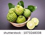 bergamot  kaffir lime and... | Shutterstock . vector #1073268338