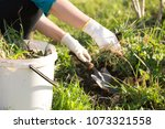 woman hand clearing  pulling... | Shutterstock . vector #1073321558