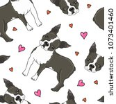 Boston Terrier Dog And Hearts...