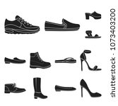 a variety of shoes black icons...   Shutterstock .eps vector #1073403200