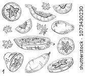papaya sketch set. tropical...   Shutterstock .eps vector #1073430230