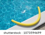 Yellow Noodle In The Swimming...