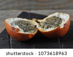 granadilla or grenadia... | Shutterstock . vector #1073618963