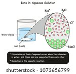 ions in aqueous solution... | Shutterstock .eps vector #1073656799
