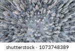 winter tree explosion  | Shutterstock . vector #1073748389