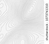 topographic map background... | Shutterstock .eps vector #1073761310