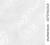 topographic map background... | Shutterstock .eps vector #1073761313
