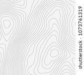topographic map background... | Shutterstock .eps vector #1073761319