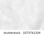 topographic map background... | Shutterstock .eps vector #1073761334