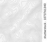 topographic map background... | Shutterstock .eps vector #1073761340