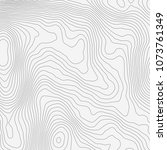 topographic map background... | Shutterstock .eps vector #1073761349