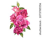 set watercolor elements of... | Shutterstock . vector #1073785556