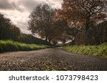 english country path with...   Shutterstock . vector #1073798423