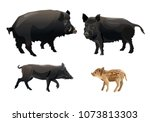 a family of wild pigs. vector... | Shutterstock .eps vector #1073813303