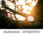 antique pocket watch hanging on ...   Shutterstock . vector #1073837870