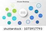 mind map with round elements... | Shutterstock .eps vector #1073917793