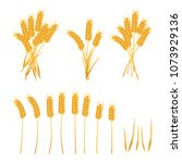 wheat set  wheat ears and sheaf ...   Shutterstock .eps vector #1073929136