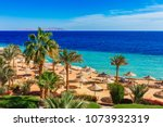 sunny resort beach with palm... | Shutterstock . vector #1073932319