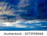white  grey heavy fluffy ... | Shutterstock . vector #1073958068