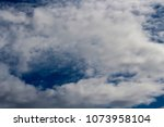 white  grey heavy fluffy ... | Shutterstock . vector #1073958104