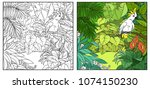 wild jungle with cockatoo...   Shutterstock .eps vector #1074150230