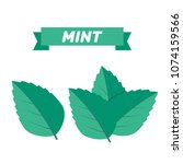 mint green vector illustration... | Shutterstock .eps vector #1074159566