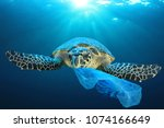 Stock photo plastic pollution in ocean environmental problem turtles can eat plastic bags mistaking them for 1074166649