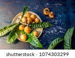 loquat fruit. nispero.... | Shutterstock . vector #1074303299