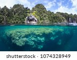 a shallow  healthy coral reef...   Shutterstock . vector #1074328949