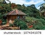 Small Wooden House In The Jungle