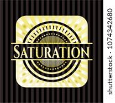 saturation gold badge or emblem | Shutterstock .eps vector #1074342680