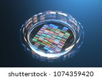 petri dishes with samples for... | Shutterstock . vector #1074359420