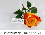 good luck card with one orange... | Shutterstock . vector #1074377774