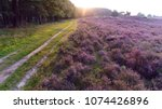 picture of rural path and... | Shutterstock . vector #1074426896