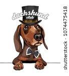 dachshund dog in a gentleman...   Shutterstock .eps vector #1074475418