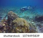 cancun  mexico  april 21  2018. ... | Shutterstock . vector #1074495839