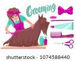 dog grooming.woman combing dog... | Shutterstock .eps vector #1074588440