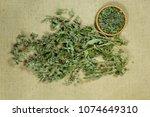 mint  spearmint. dry herbs for... | Shutterstock . vector #1074649310