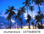 the beauty of nature during... | Shutterstock . vector #1074680078