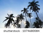 the beauty of nature with... | Shutterstock . vector #1074680084