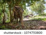 ko chang   thailand   april...   Shutterstock . vector #1074753800
