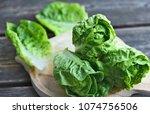 a lot of fresh romaine lettuce... | Shutterstock . vector #1074756506