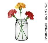 multicolored flowers carnation... | Shutterstock .eps vector #1074757760