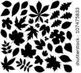 leaf collection   vector... | Shutterstock .eps vector #107475833