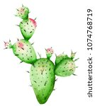 Cute Watercolor Cactus 100 ...
