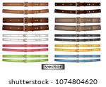 vector. belt leather  bright... | Shutterstock .eps vector #1074804620